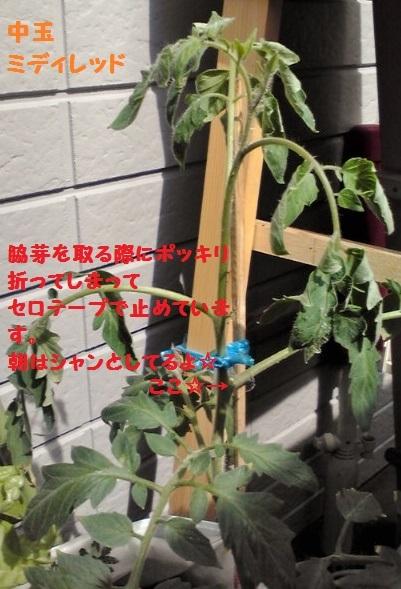 20140720143659.jpg